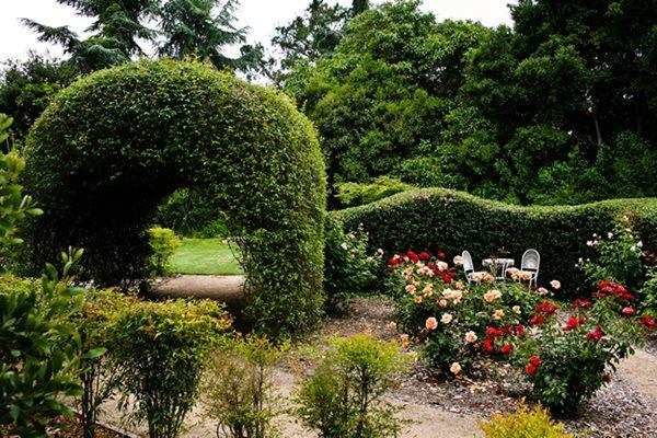 Garden Photos From Napa Gallery Garden Design