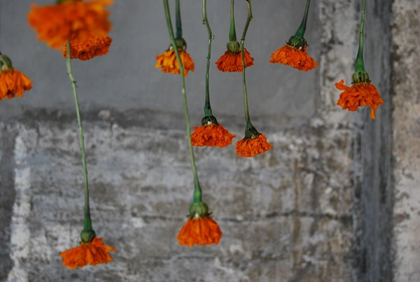 Holiday Centerpieces: Hanging Sculptures Garden Design Calimesa, CA