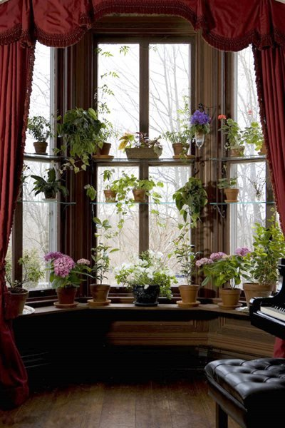 How To Design A Window Garden Gallery Garden Design
