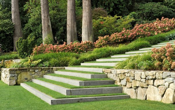Dwarf Shrubs Landscape Design Pictures Land Morphology Seattle, WA