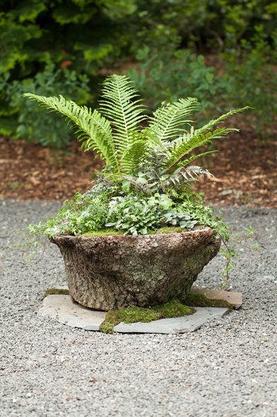 LongHouse Reserve Planters: On & Off the Ground Competition Winners Tracy Jamar New York, NY