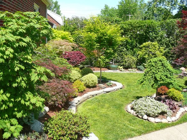 Maple garden in ohio gallery garden design for Garden design with japanese maple