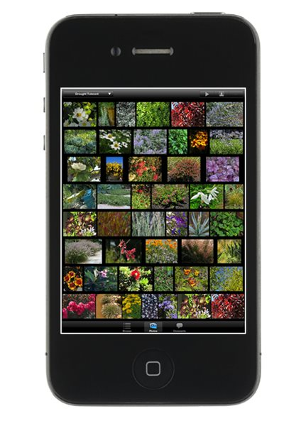 Mobile App Makes Plant Selection Easier than Ever Garden Design Calimesa, CA