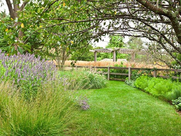 Oehme van sweden hamptons garden gallery garden design for Hamptons home and garden design penarth