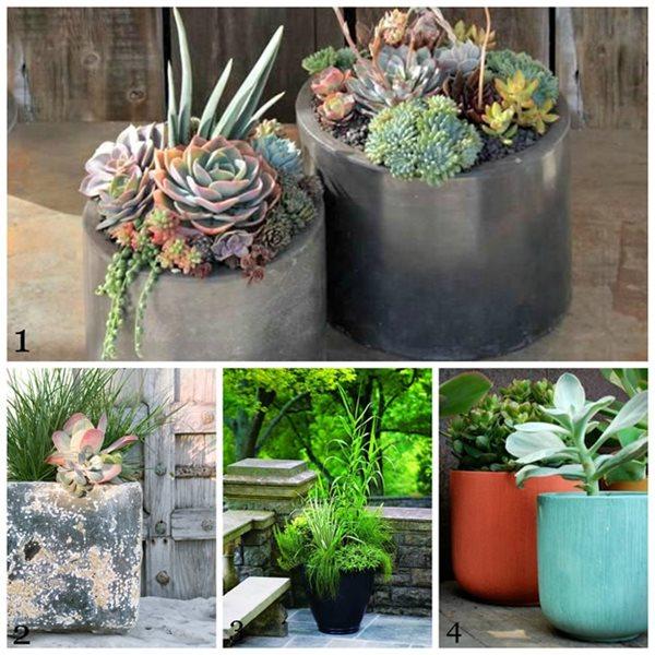 Our Top 10 Favorite Pinterest Boards - Gallery | Garden Design