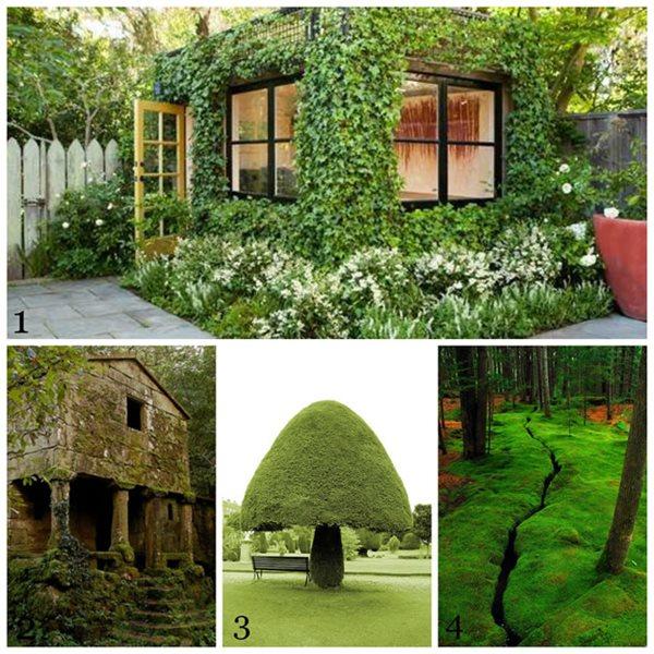 Atlanta Landscape Designer On Pinterest