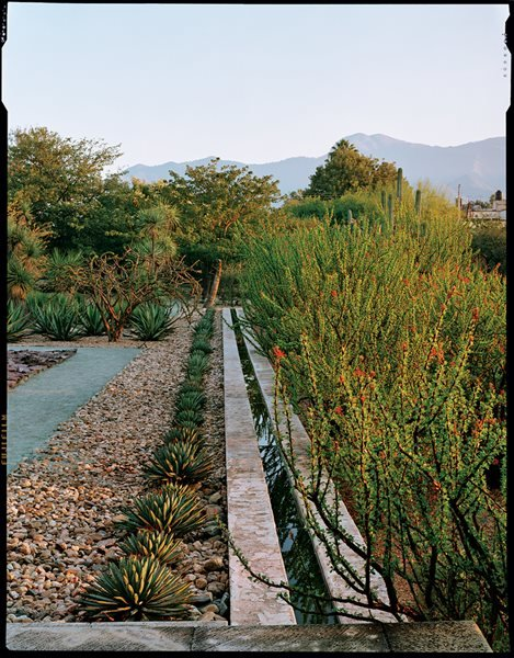 Photos of Jardin Etnobotanico de Oaxaca Garden Design Calimesa, CA