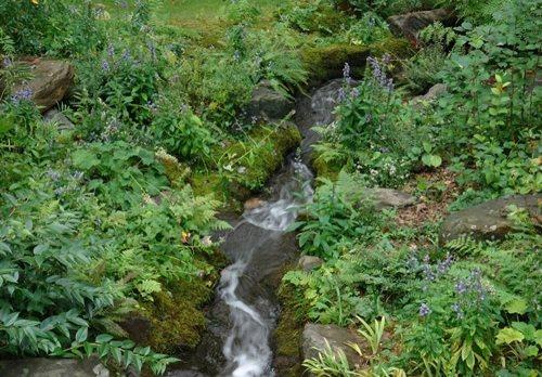 Machado Landscaping Woodland Ca : Rick darke s american woodland garden gallery design