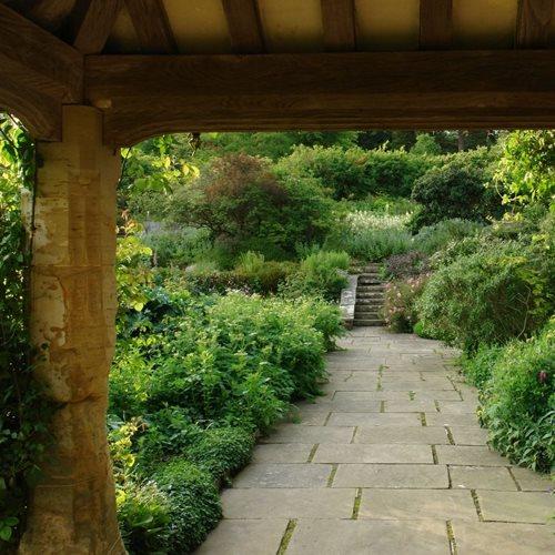 The Landscape Gardener: Rick Darke's American Woodland Garden - Gallery