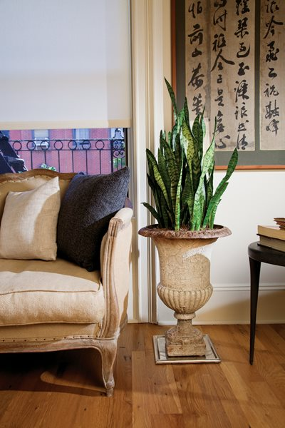 Second Nature: A New York City Apartment Makeover, Photo Gallery Garden Design Calimesa, CA