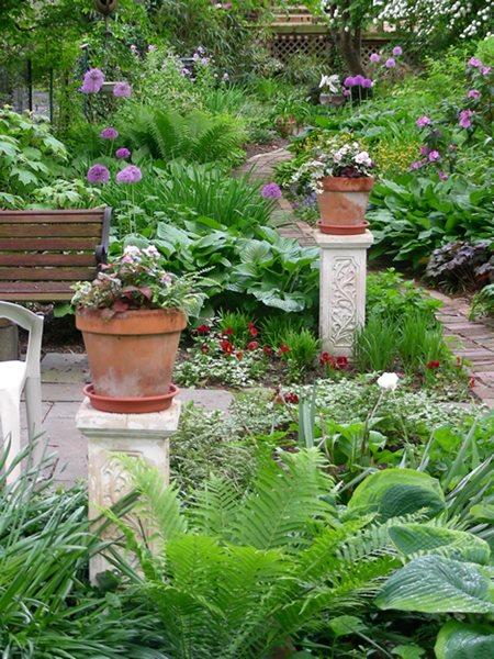 Small Garden, Big Interest - Gallery
