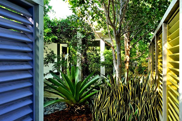 Subtropical Modernism Lively Landscapes In The Florida Keys Delectable Florida Garden Design