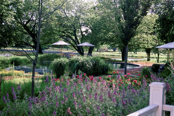 The Landscape Designs of Wolfgang Oehme Garden Design Calimesa, CA