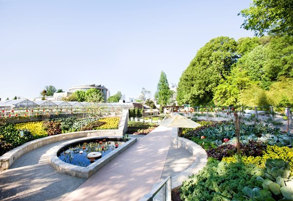 Three New Reasons to Visit the Atlanta Botanical Garden Garden Design Calimesa, CA