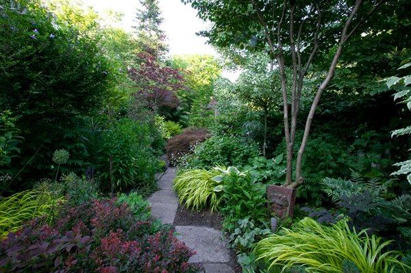 Toronto shade garden gallery garden design for Shade flower garden designs