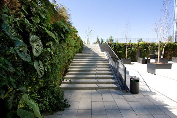 Vertical Gardens: Slide Show - Gallery | Garden Design