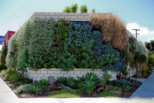 Vertical Gardens: Slide Show Garden Design Calimesa, CA