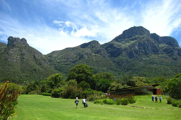Visiting South Africa's Kirstenbosch Garden Design Calimesa, CA