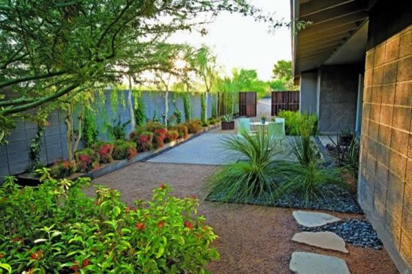 Water-Wise Plants and Design for Earth Day  Garden Design Calimesa, CA