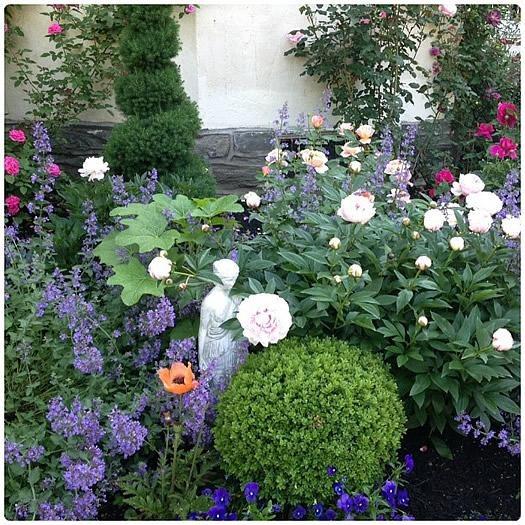 """Topphotocaseygarden_resize2 """"Dream Team's"""" Portland Garden Garden Design Calimesa, CA"""