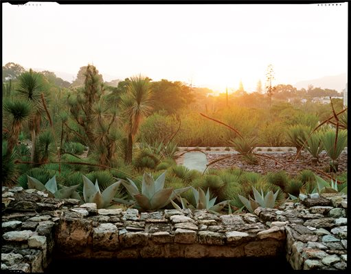 Oaxaca 39 s ethnobotanical garden garden design for Jardin oaxaca