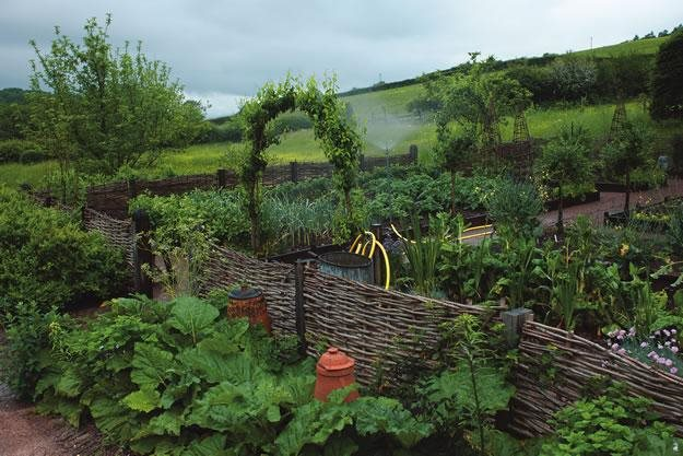 Ideas for starting a kitchen garden garden design for Kitchen garden design