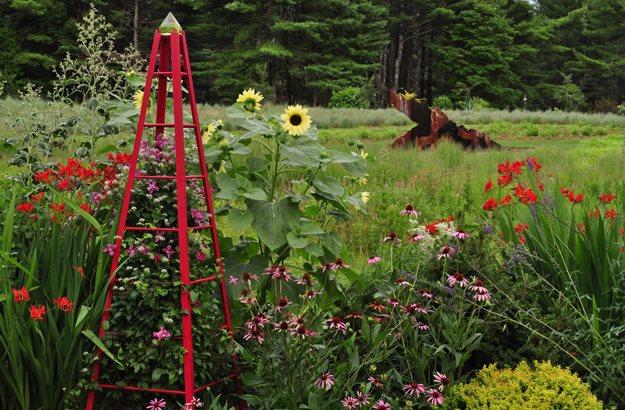 "02_red_tuteur_crocosmia_echinacea_sunflower_pampenick_bedrockgardens ""Dream Team's"" Portland Garden Garden Design Calimesa, CA"