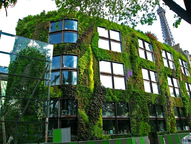 Vertical garden design ideas garden design - Mixed style gardens ...