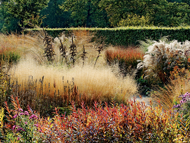 Piet oudolf 39 s next wave garden design - Garden design using grasses ...