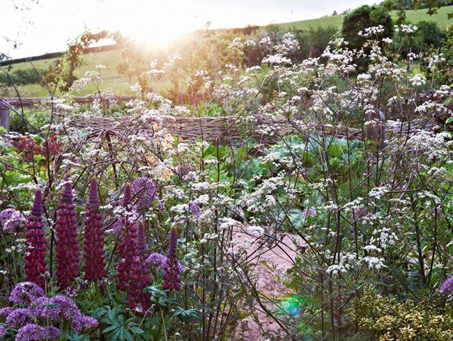 Arne Maynard S Rustic Home In Wales Garden Design