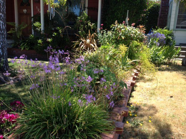 "Happy Garden Photo ""Dream Team's"" Portland Garden Garden Design Calimesa, CA"