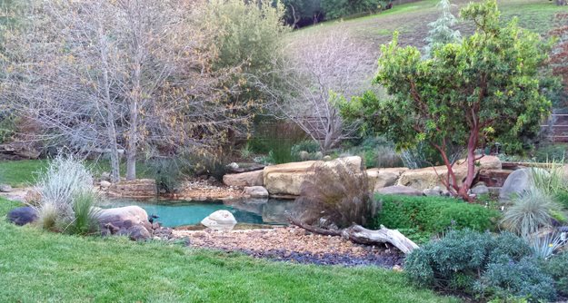 Natural-Style Poolscape | Garden Design