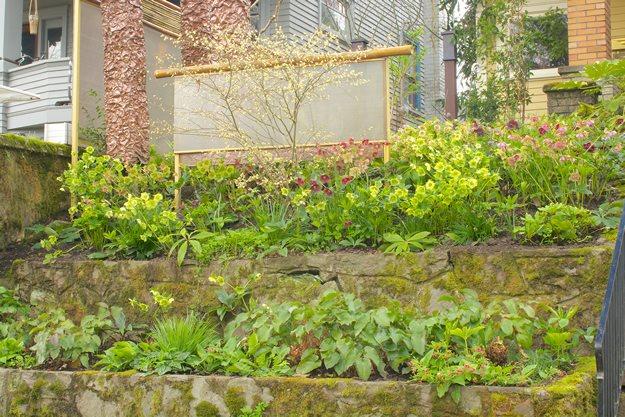 A Winter Jewel Box | Garden Design on