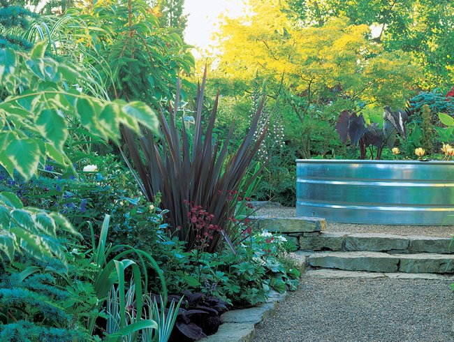 Galvanized Stock Tank, Water Plants Minor Miracles: Jewel Box Mosaic Gardens Eugene, OR