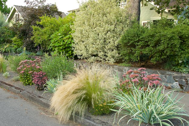 1 garden design calimesa ca - Garden Design Trends 2015