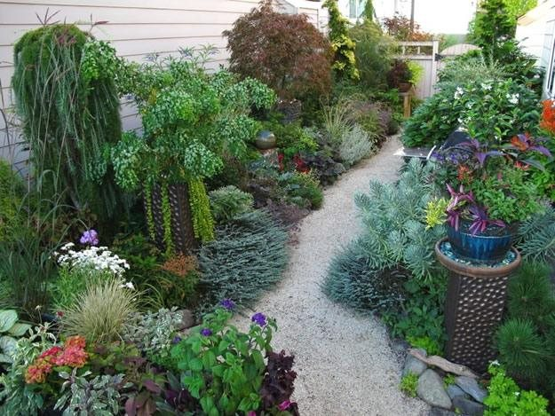My private oasis garden design for Small private garden ideas