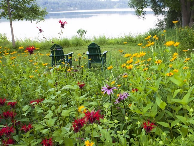 Ake View, Adirondack Chairs, Meadow Garden Larry Weaner Landscape Associates Glenside, PA