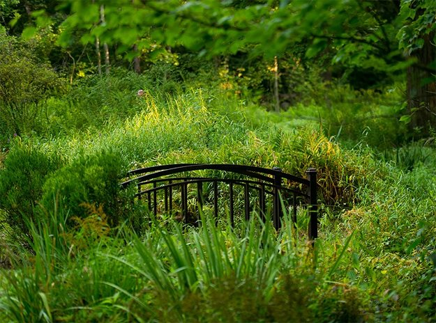 Bridge Over Wetlands The LaurelRock Company Wilton, CT
