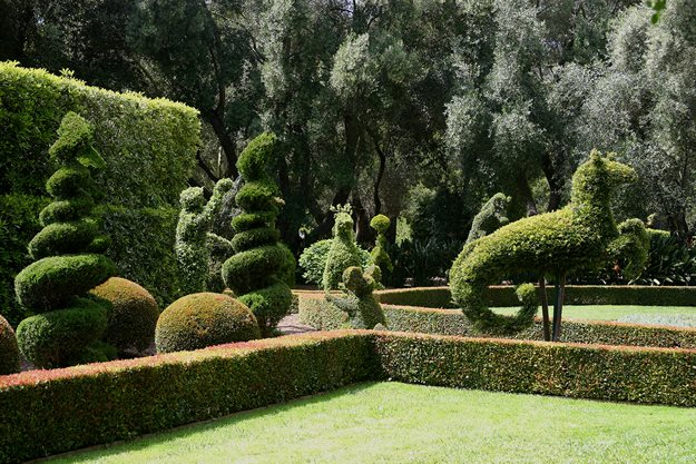 Contained_topiary Garden Design Calimesa, CA