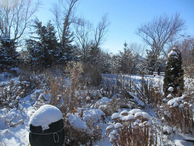 December Garden In Snow Monarch Gardens Lincoln, NE