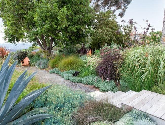 Encinitas, Water Wise Garden Debora Carl Landscape Design Encinitas, CA
