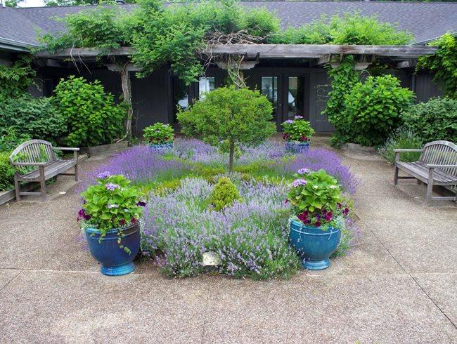 Fernwood S Spring Symposium Garden Design