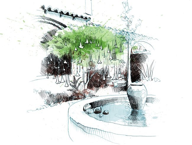 Fountain Drawing David Despau ,