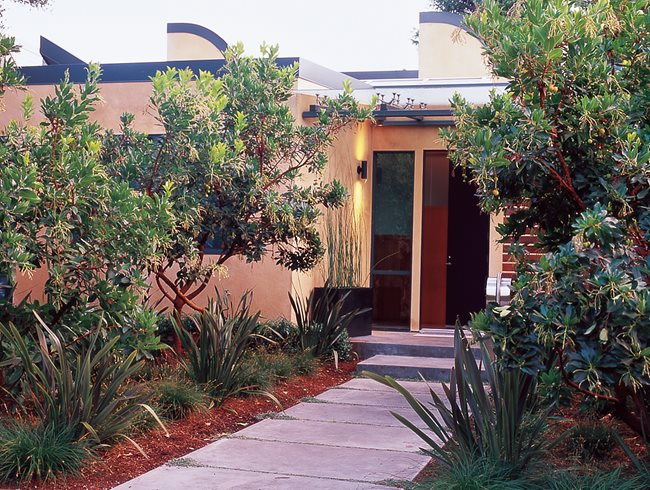 Front Entry Plants, Madrone Trees Bernard Trianor + Associates Monterey, CA