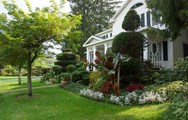 Garden gone berserk garden design for Garden design front of house