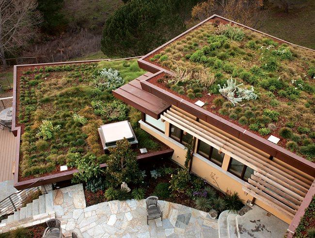 Green Roofs | Garden Design on