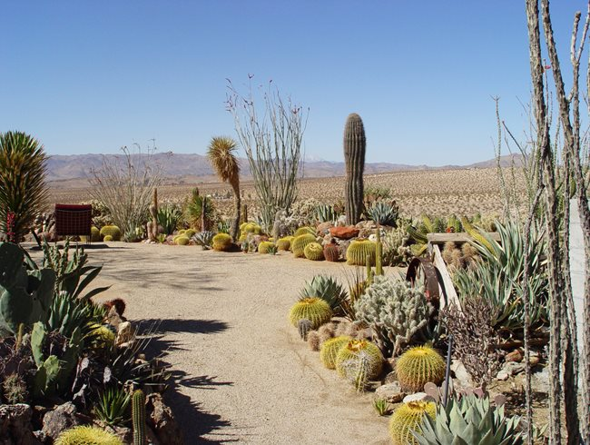 Mojave Rock Ranch Reinvents the Desert Garden Garden Design