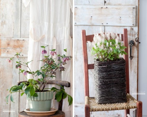 Indoor Plants On Chairs Kindra Clineff Garden Design Calimesa, CA