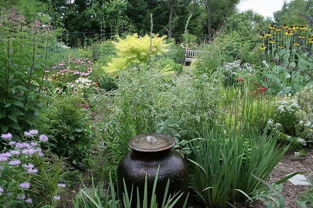 Native seasonal garden garden design for Native plant garden designs
