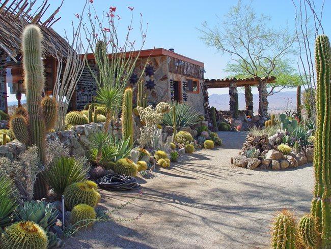 Landscape rocks in houston cactus rock garden design for Landscaping rocks daytona beach